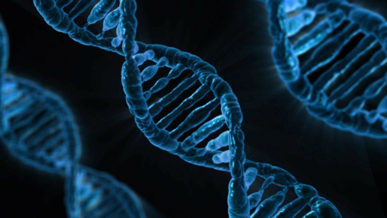 DNA-Strang (c) Pixabay